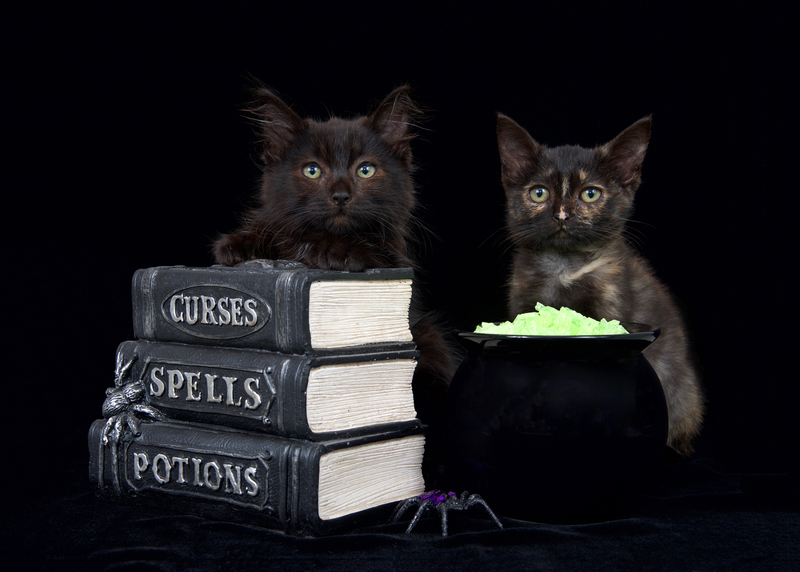ancient spells that work, black magic love spell, spell to dominate someone